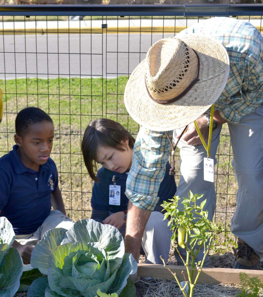 Belle Chasse Academy Victory Garden has broad role at the charter school _lowres