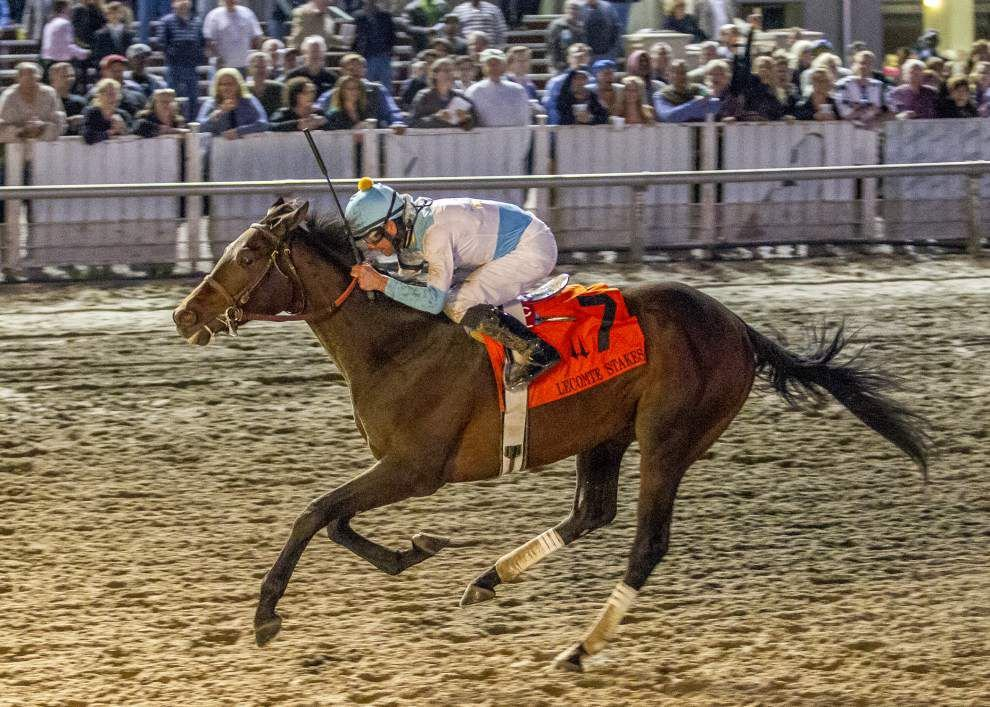 Big, strong field expected for March 26 Louisiana Derby _lowres