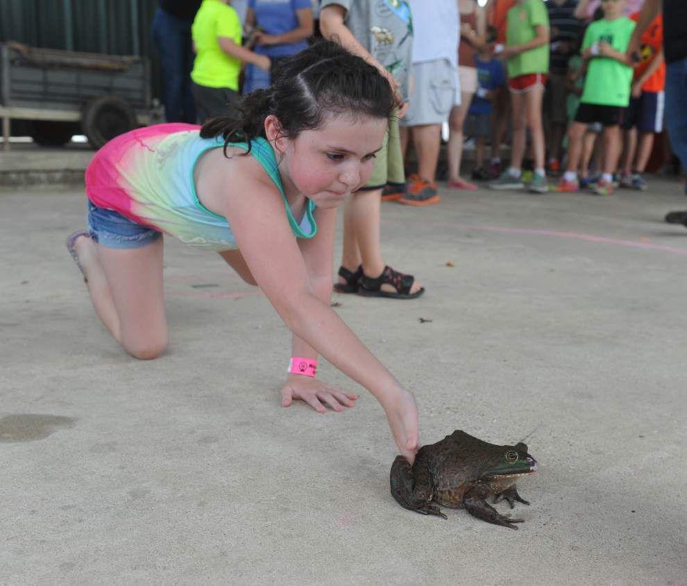 Photos: Rayne Frog Festival _lowres
