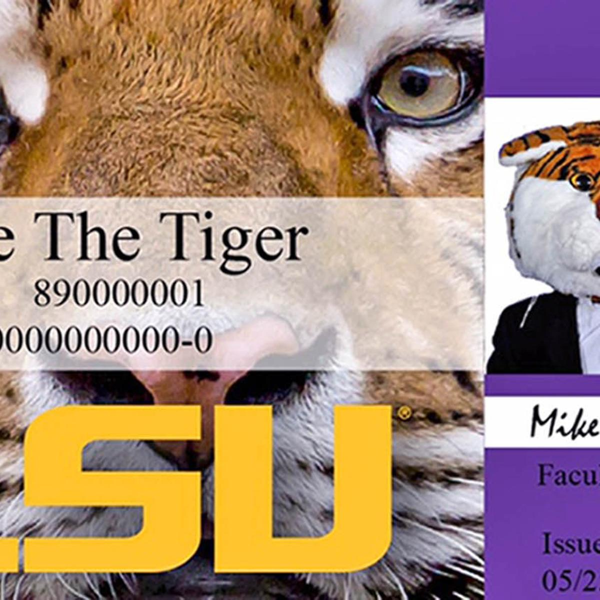 New LSU student ID cards serve as ticket to voting booth