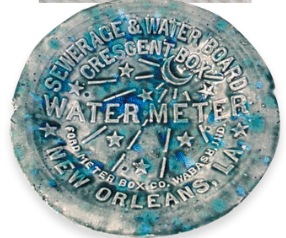 300 Water Meter