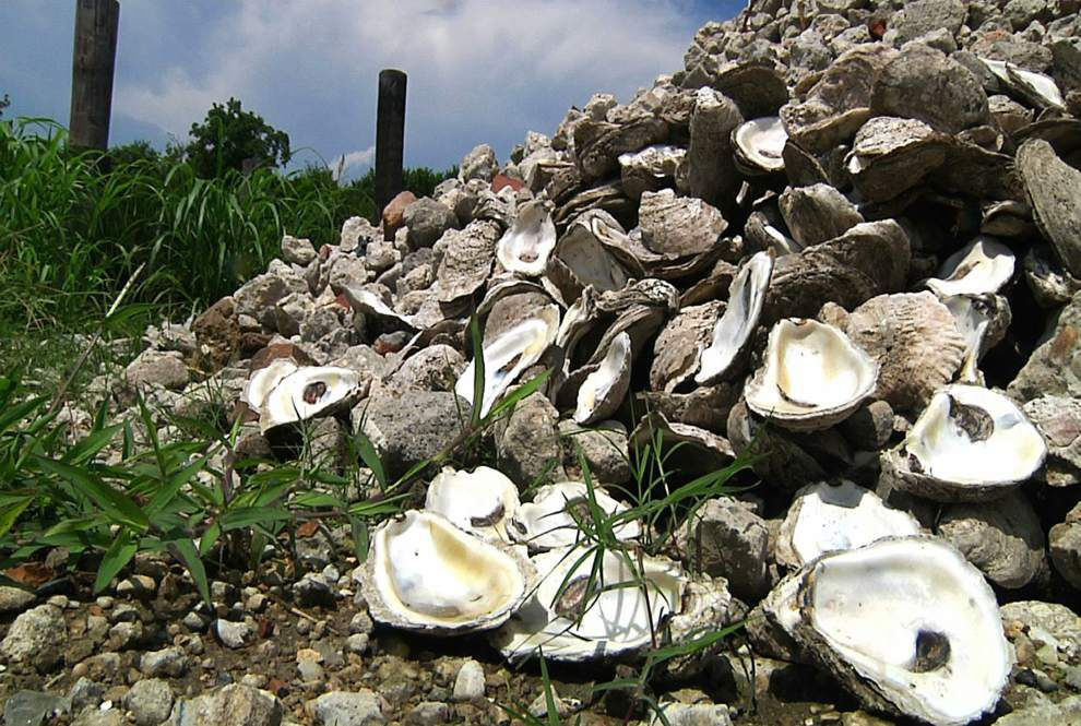 Louisiana takes 'crucial' step to save coast and oyster industry _lowres
