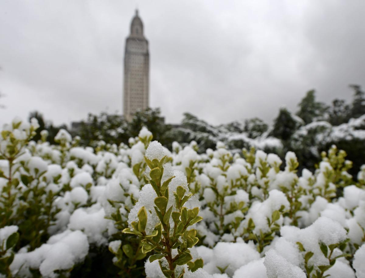 BR.snow.120917 HS 936.JPG