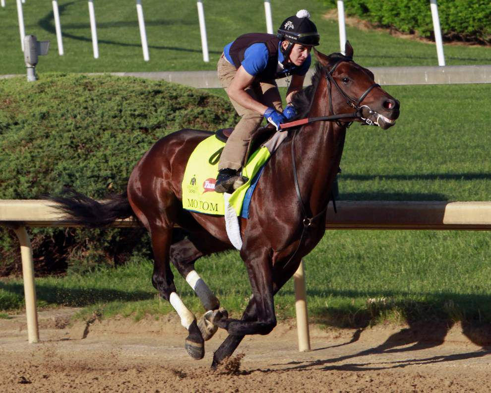 Mo Tom to run from No. 4 position for Kentucky Derby; Tom's Ready draws No. 12 _lowres