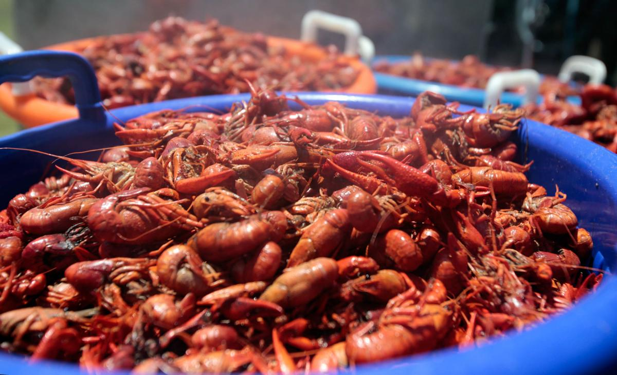 75490b8dd6 With Mardi Gras over, you might be ready for crawfish. But is ...