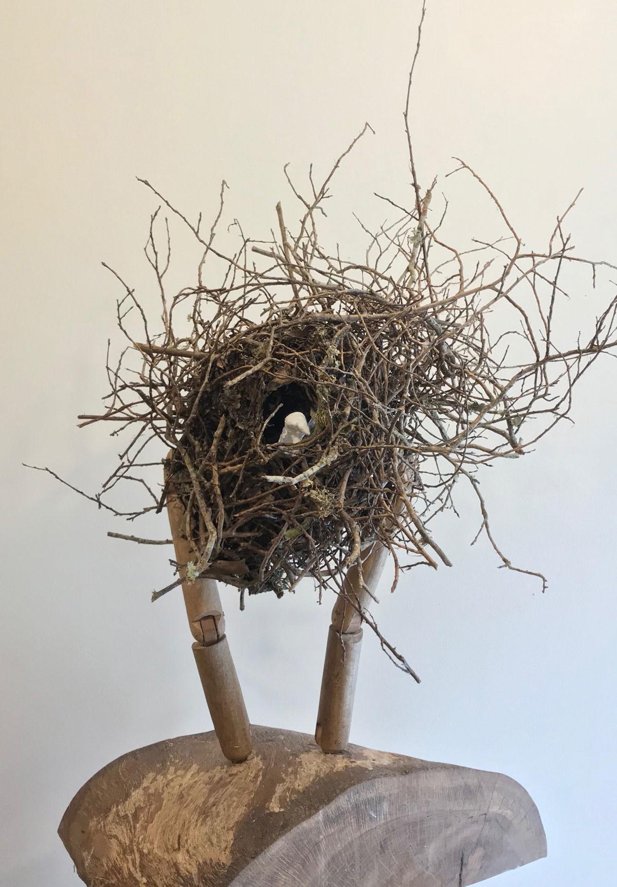 Carwile nest