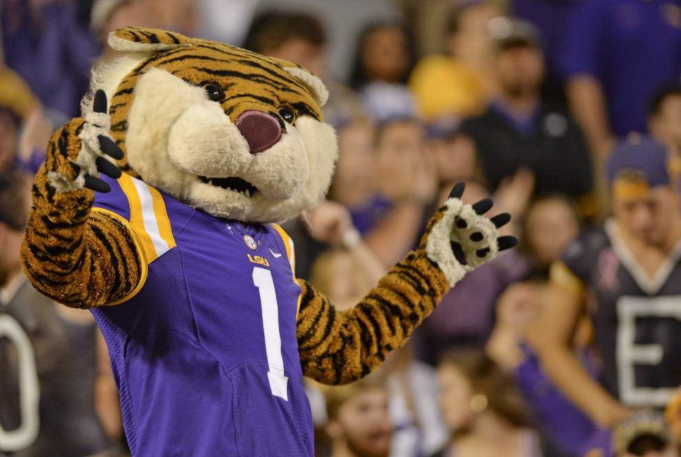 LSU fans send prayers, show touching kindness for South Carolina fans _lowres