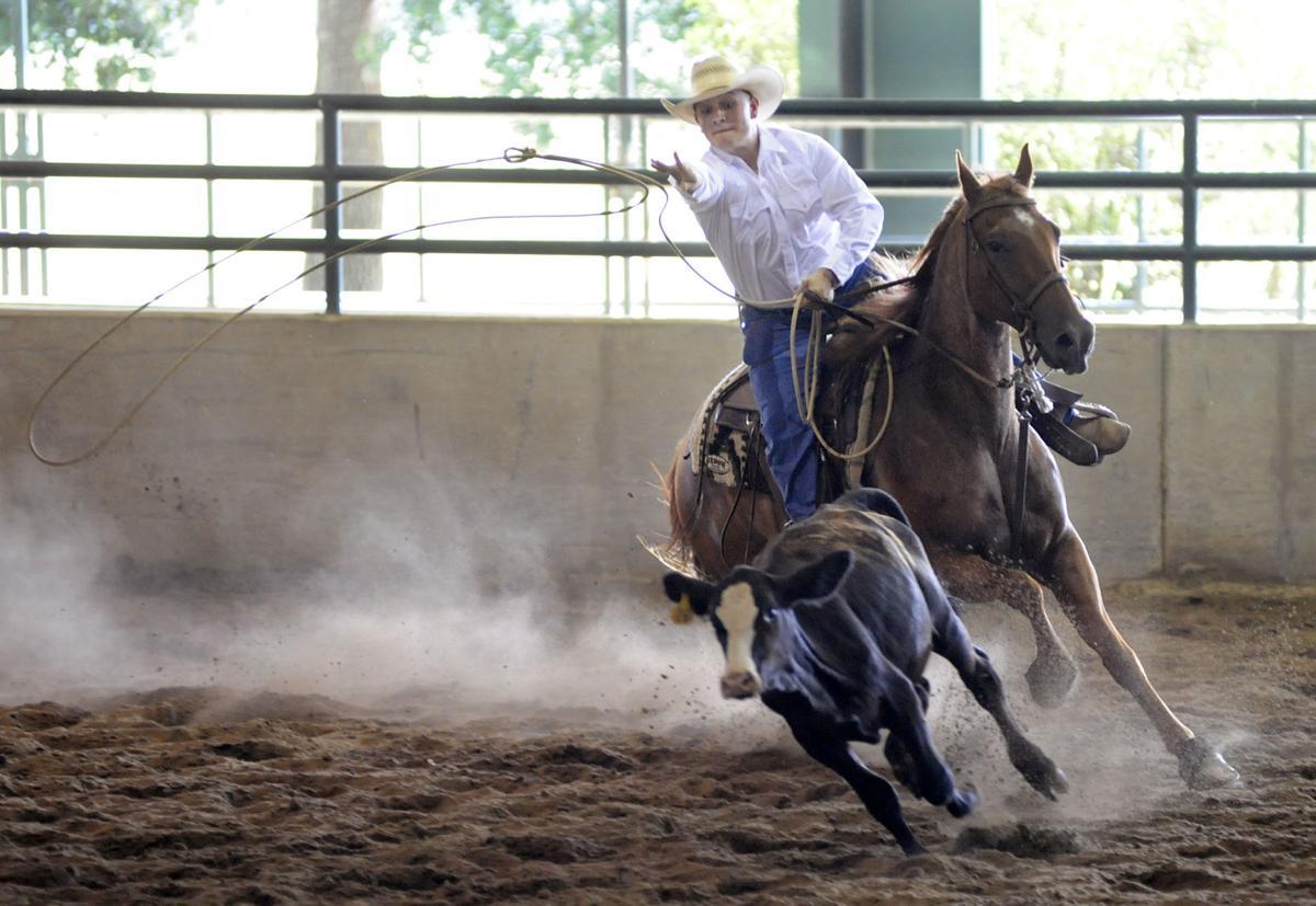BR.horseshow.005.070719