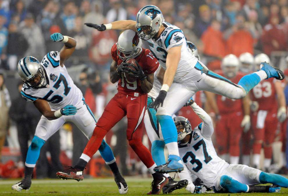 Panthers oust Cardinals _lowres
