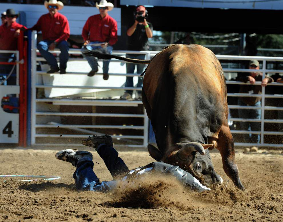 Angola Prison Rodeo Longest Running Prison Rodeo In