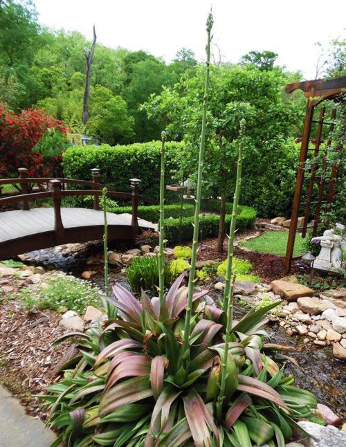 Highland sites on LSU garden tour _lowres