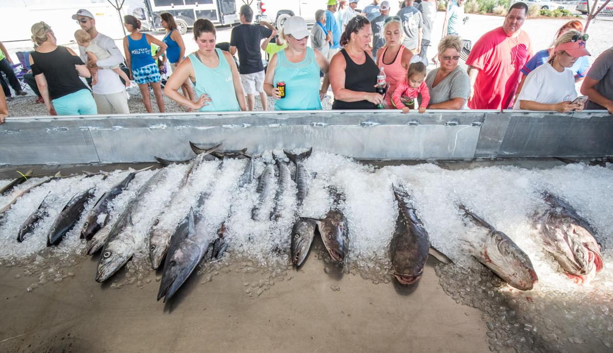 Grand Isle Tarpon Rodeo Finishes With Enormous 208 Pound