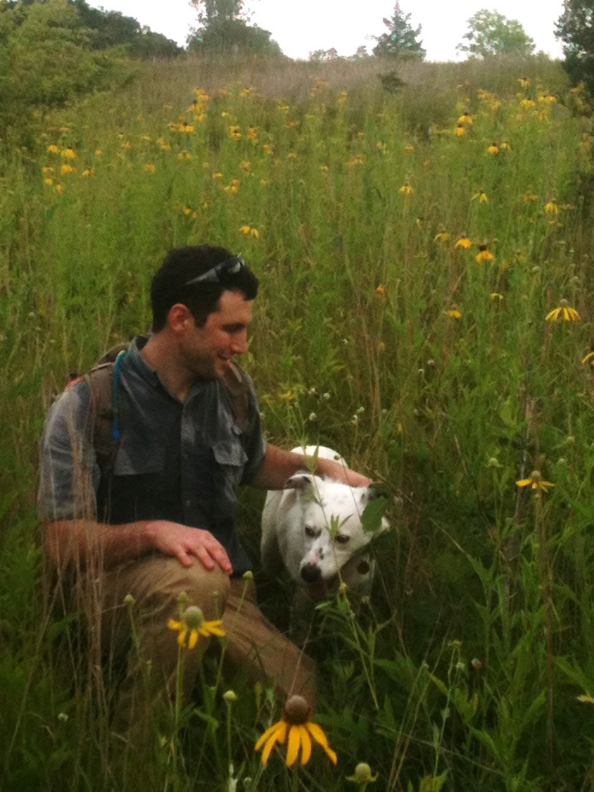 Brian Early_Wildflower Meadow.jpg