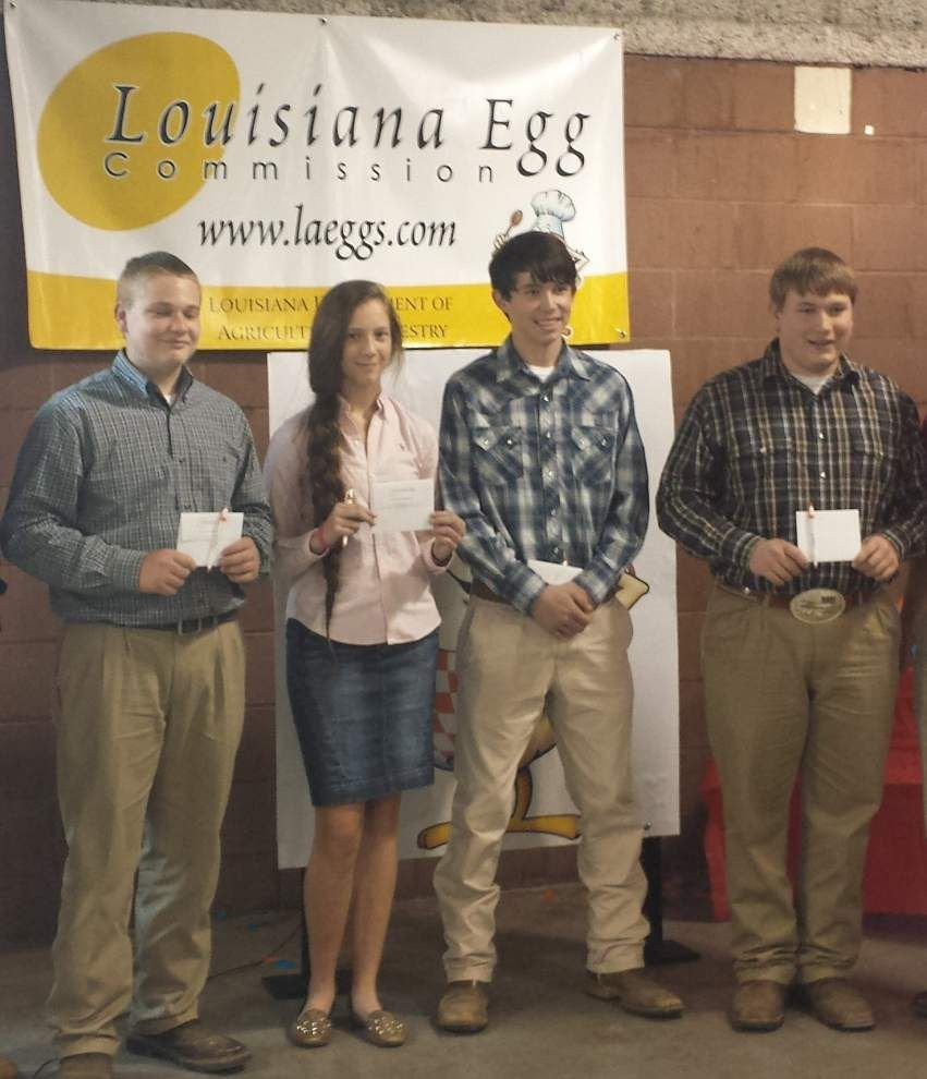 4-H members compete in state livestock show _lowres