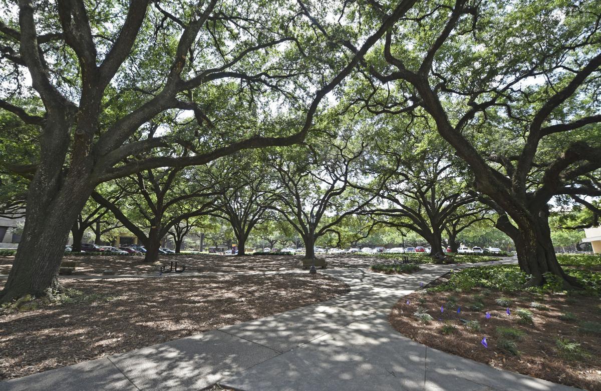 oakgroveepl.052718_HS_120