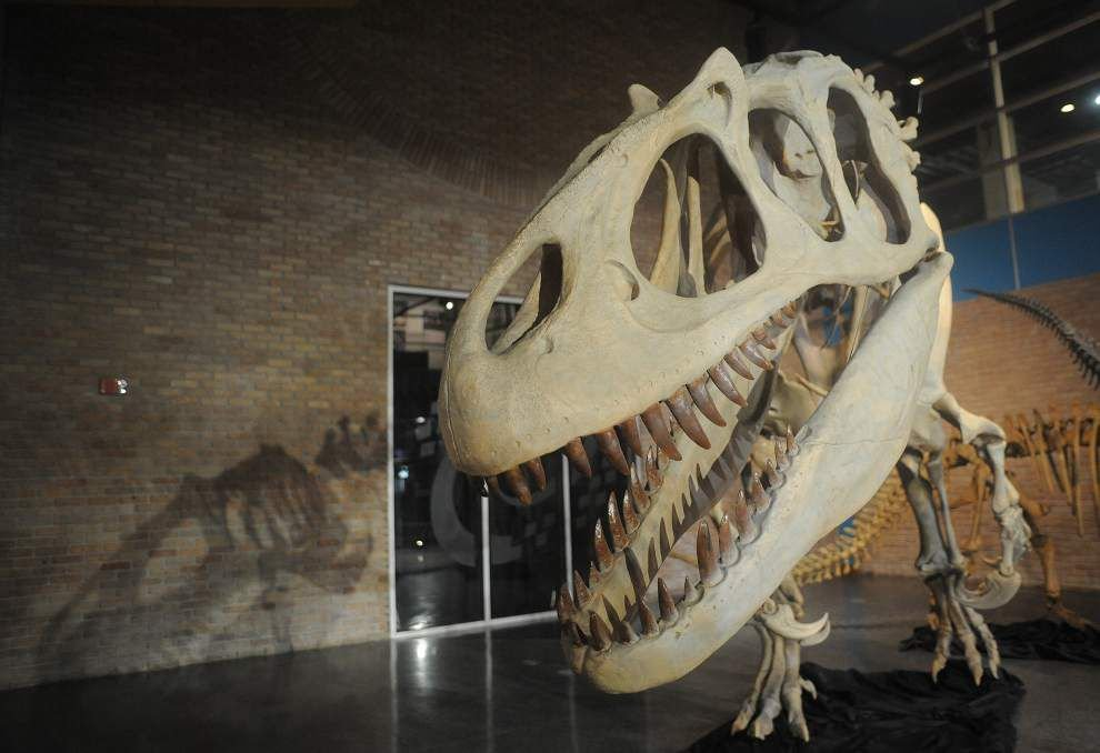 'Dinosaurs & Mammals' exhibit ends Sunday at Lafayette Science Museum _lowres