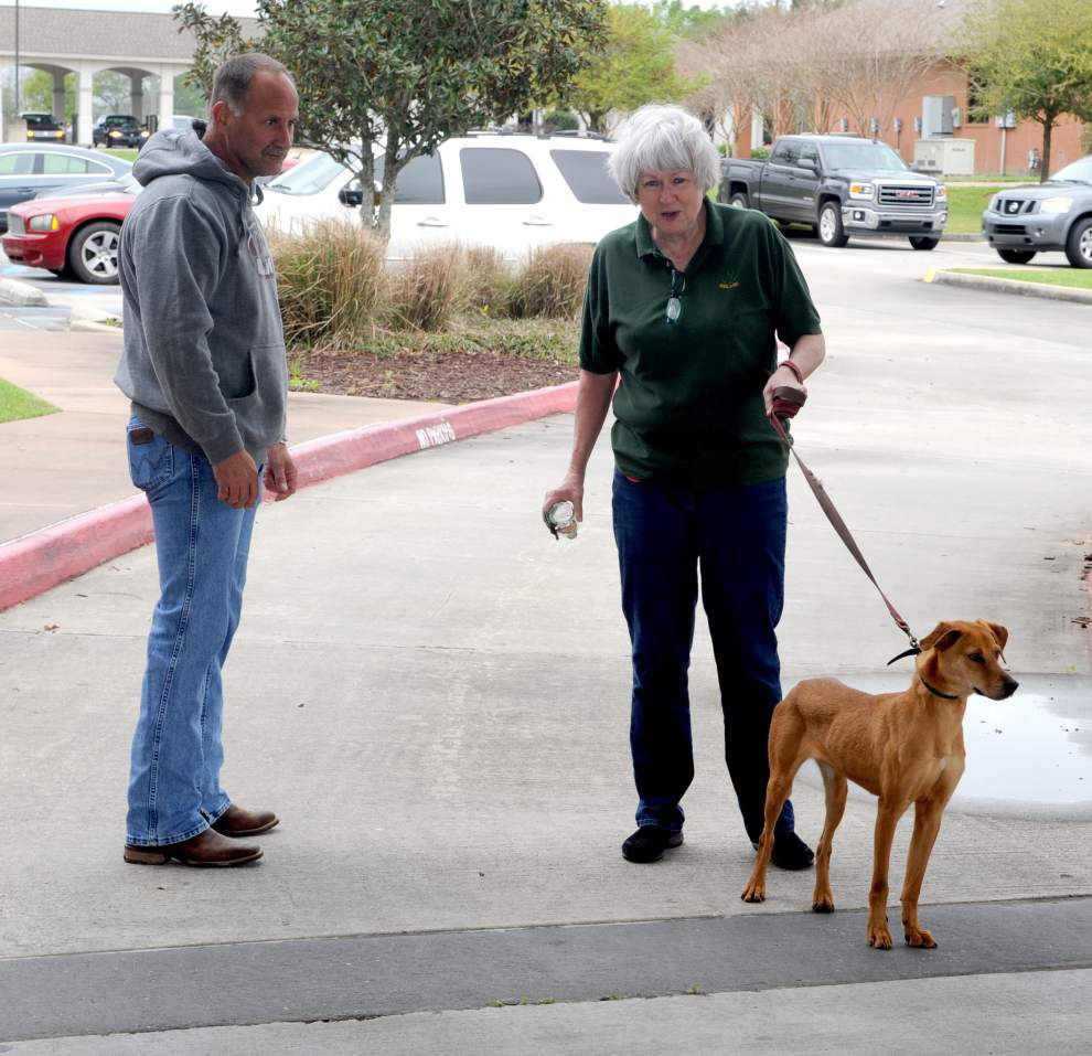 Pen Pals event helps rehome dogs _lowres