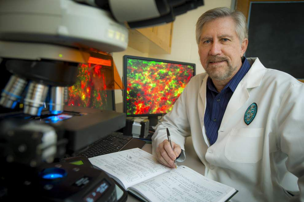 Tulane scientist working on powerful new non-addictive painkiller _lowres