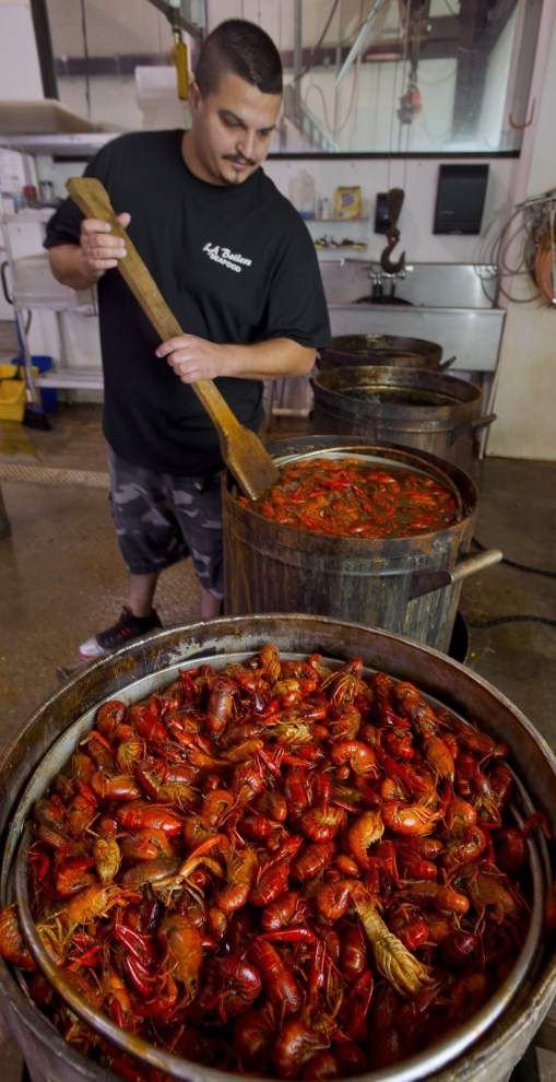 Prolonged wet and warm weather a boon to Louisiana's early crawfish crop: 'It's hot and people are thinking about crawfish' _lowres