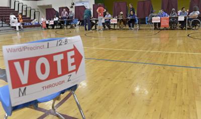 BR.voting bf 0279.jpg (copy)