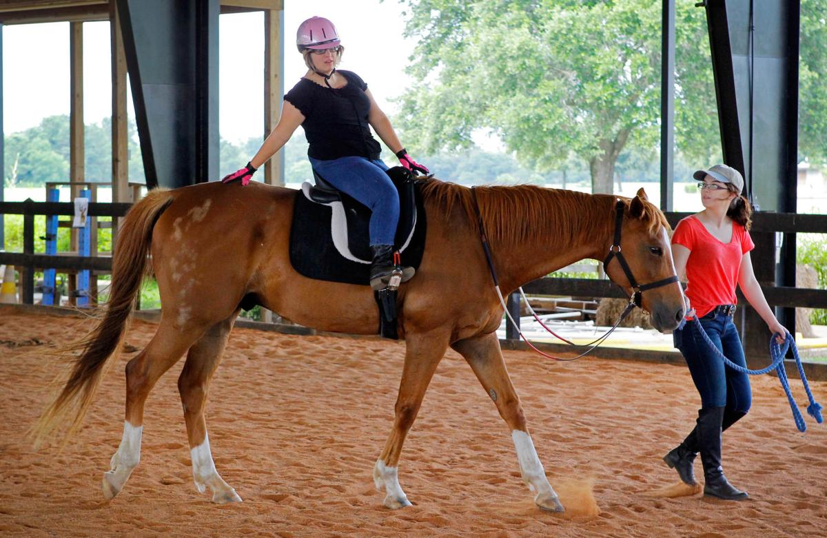 HorseTherapy54094.jpg _lowres