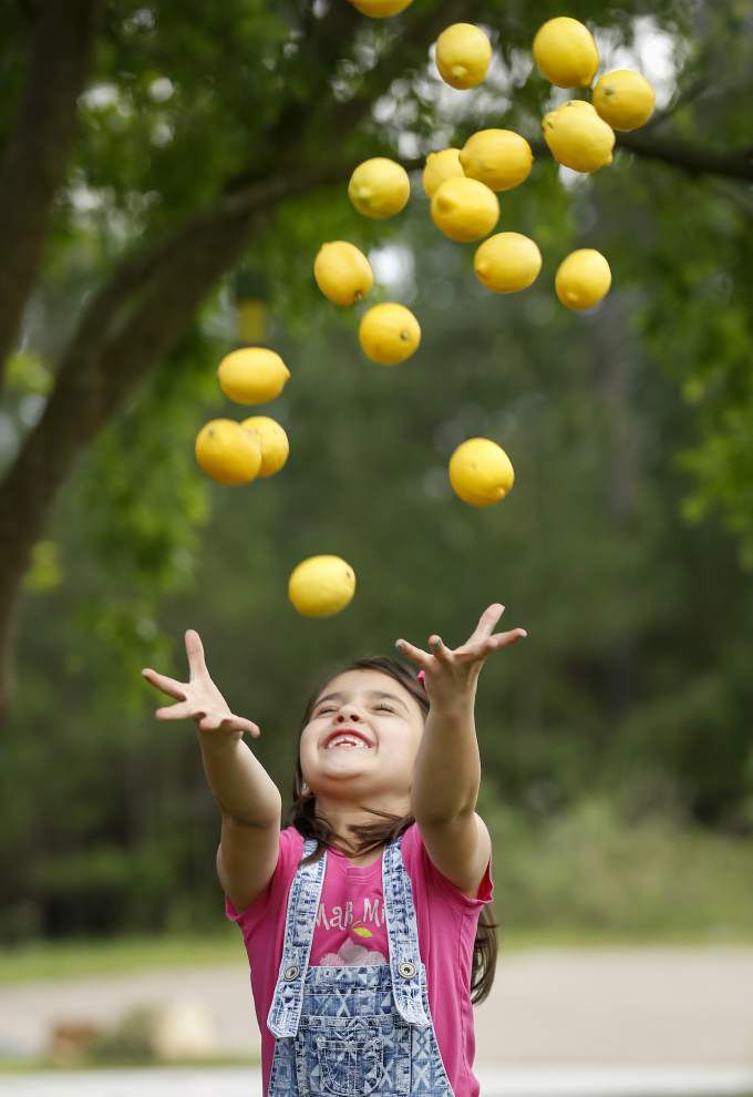 Taking a stand: On Lemonade Day, young entrepreneurs enjoy the sweet taste of success _lowres