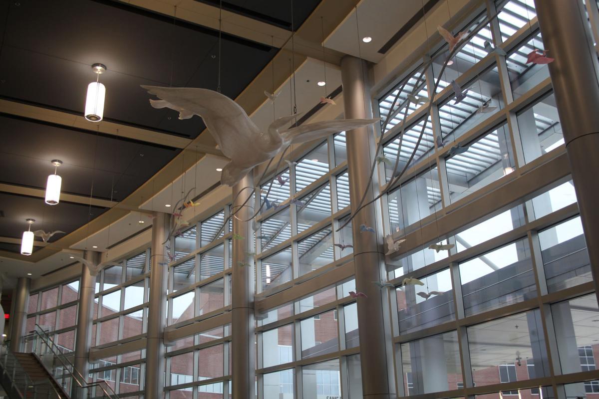 Women's Hospital in flight.jpg
