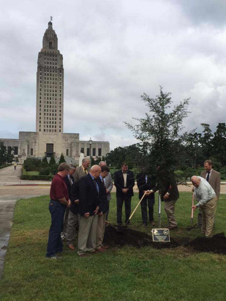State leaders gather at Capitol to plant oak _lowres