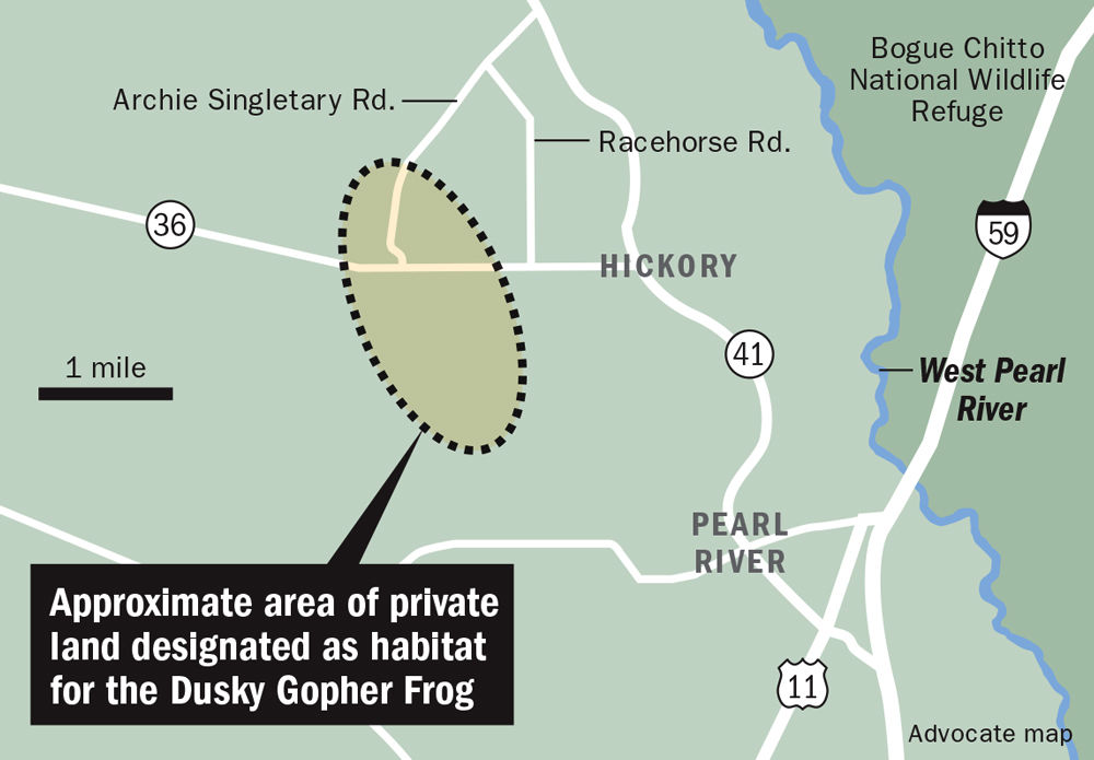 Map of private land designated as habitat for Dusky Gopher Frogs _lowres