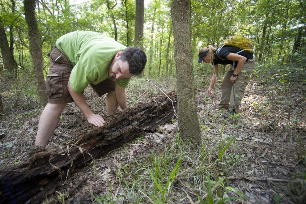 Earth Week BioBlitz part of conservation effort _lowres