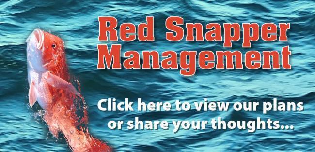 Red Snapper Management banner