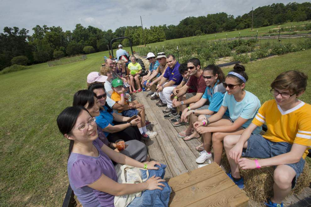 Photos: Garden Fest at Burden Center _lowres