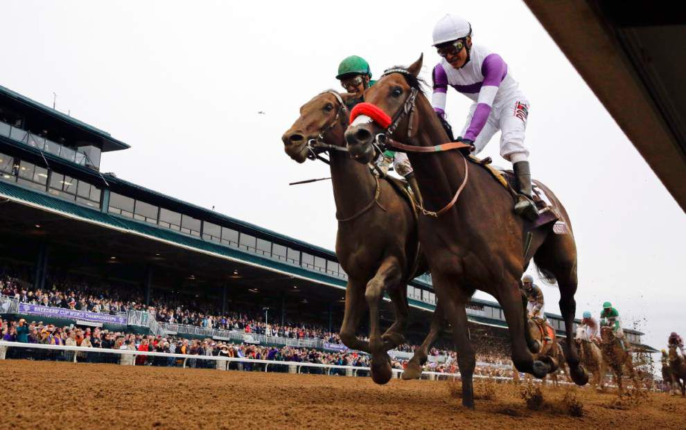 Kentucky Derby: Nyquist looks like the perfect fit to fill American Pharoah's shoes _lowres