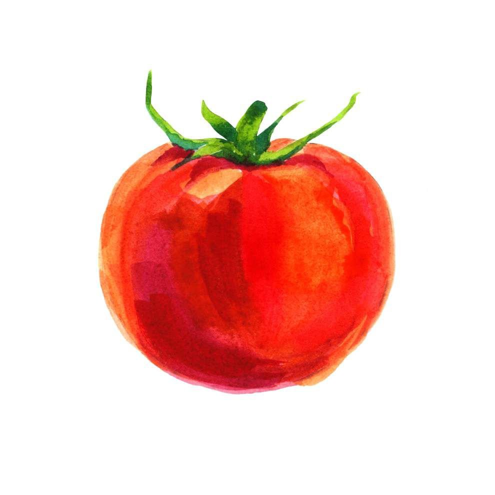 Creole Tomato Fest ripe for fun with more food, events _lowres