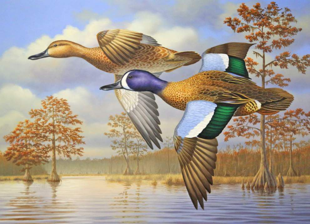 Cold fronts mean more ducks _lowres