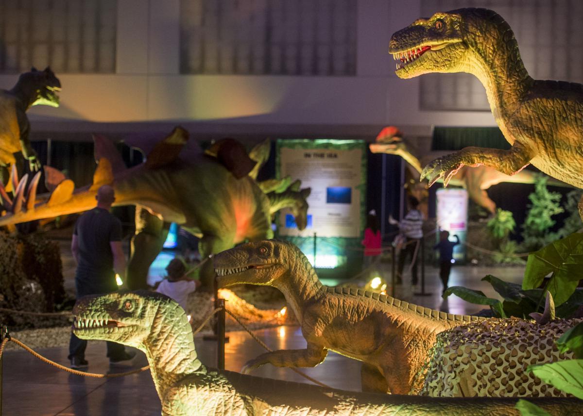 DinosaursRiverCenter BP4.JPG _lowres