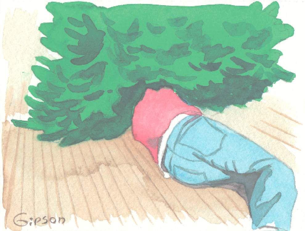 Christmas 'do-it-meself' gone awry _lowres
