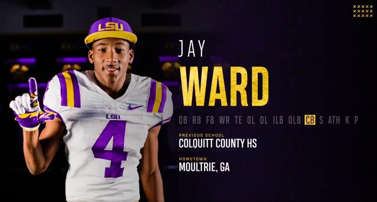 Jay Ward