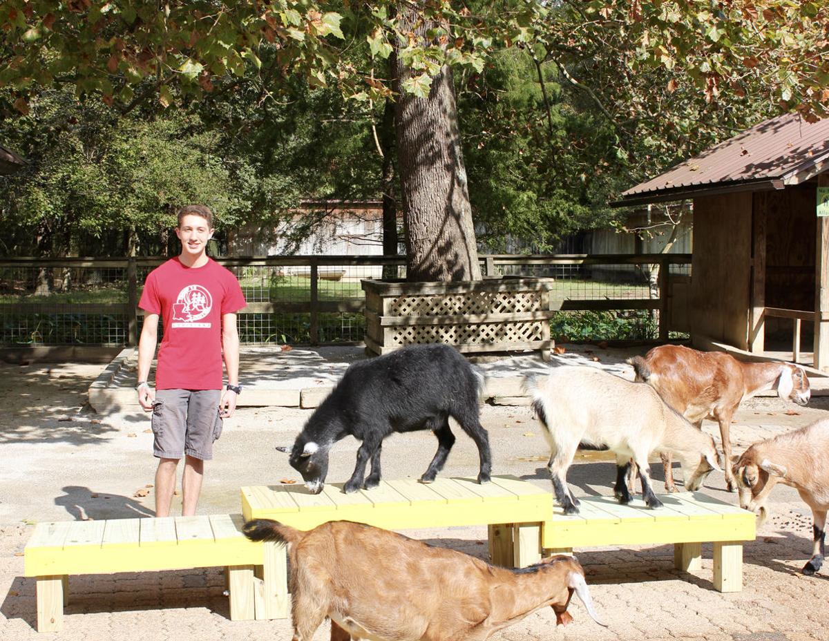 Eagle Scout Zoo Enrichment.jpg