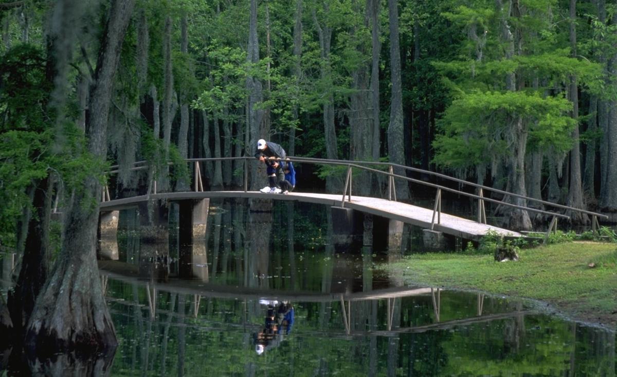 Sam HoustonJones State Park.jpg
