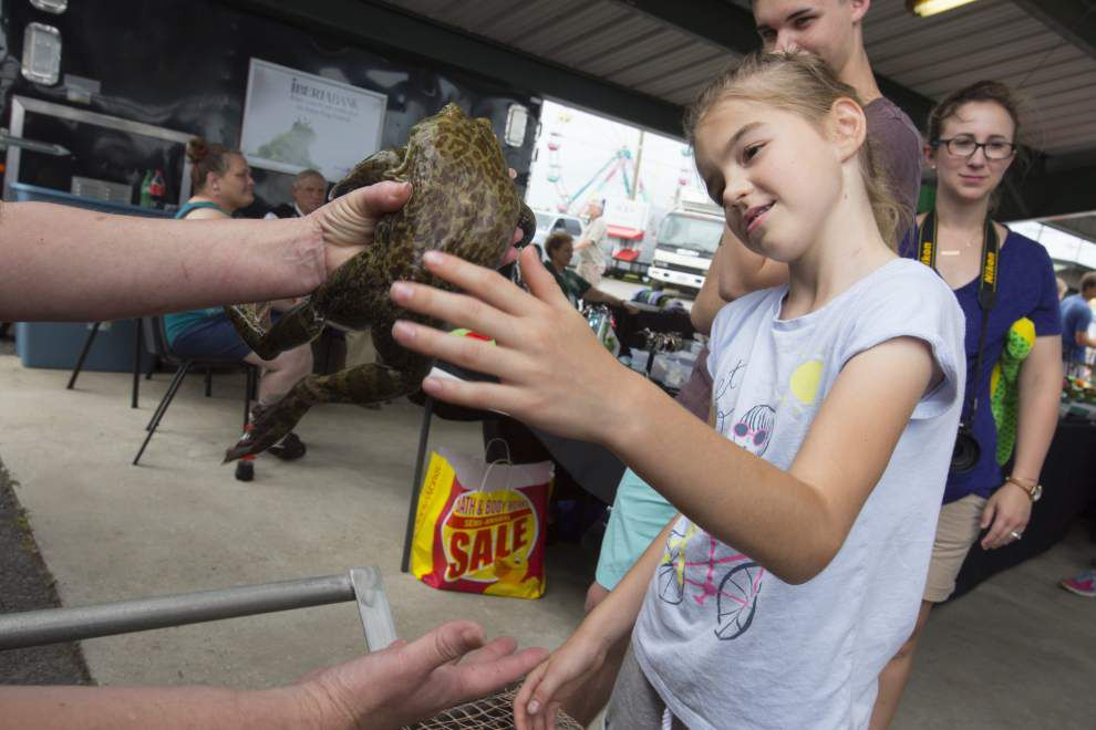 Photos 43rd. Rayne Frog Festival _lowres