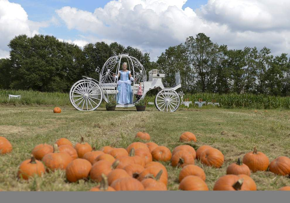 In Hammond, a family tradition brings kids back to the farm _lowres
