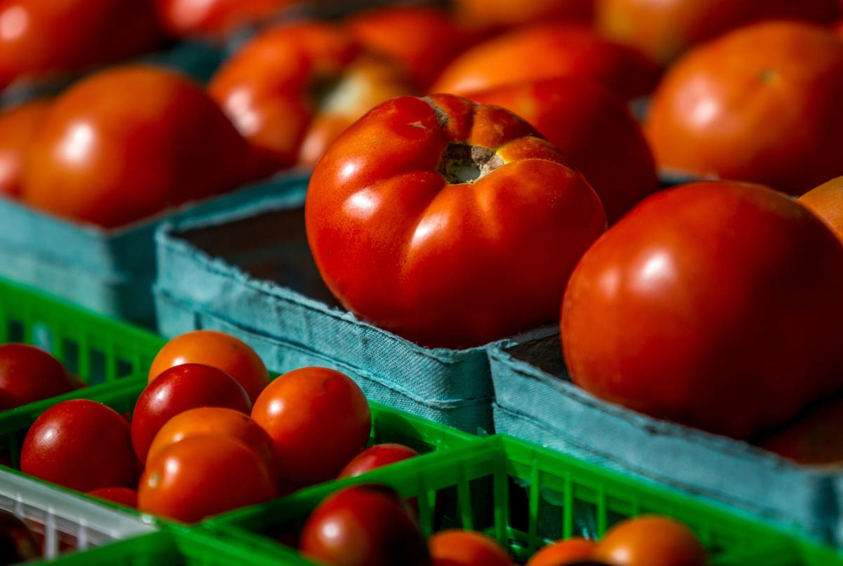 NO.creoletomato303.061117.jpg copy for Red