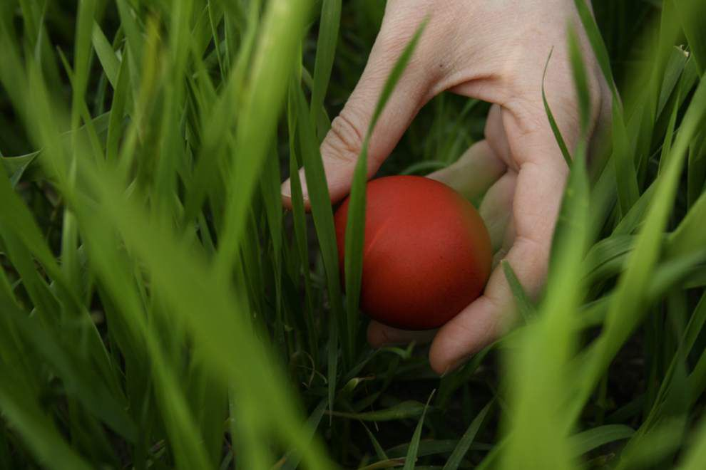 Faith Matters: Journey Church says egg hunt way to teach Gospel _lowres