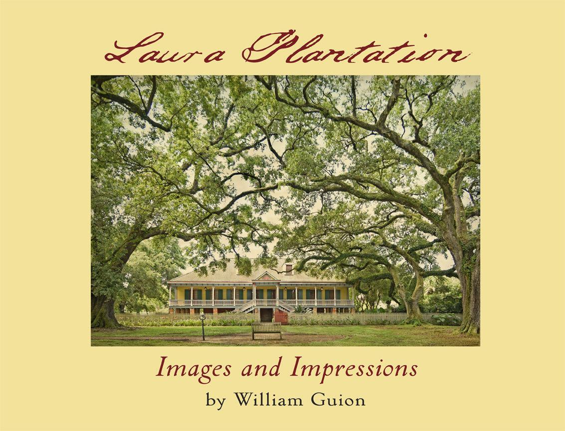 Laura Book cover.jpg