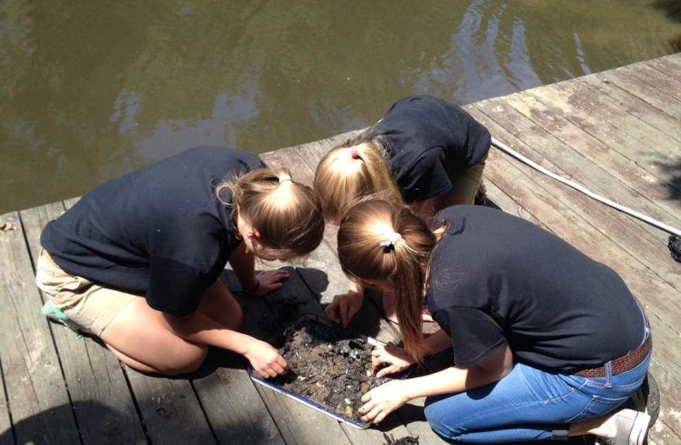Students learn significance of wetlands _lowres