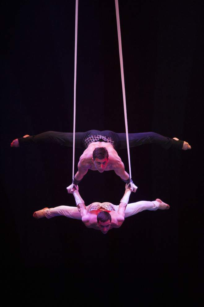 Curious creatures under the big top at this year's Ringling Bros. circus _lowres