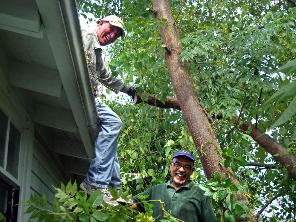 Visitors view progress on cottage renovation _lowres