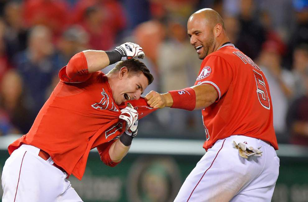 UNO's Johnny Giavotella enjoying success with Los Angeles Angels _lowres