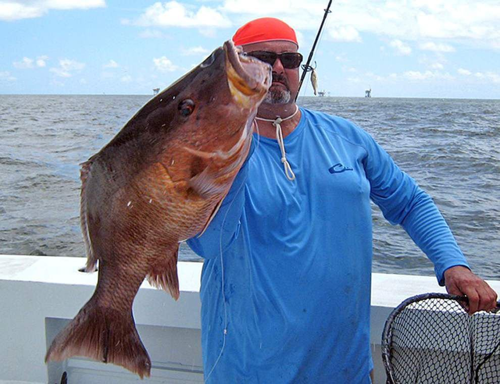 Tim Champagne's massive mangrove snapper could set state, world marks _lowres